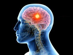 waarom Omega 3 brein effect